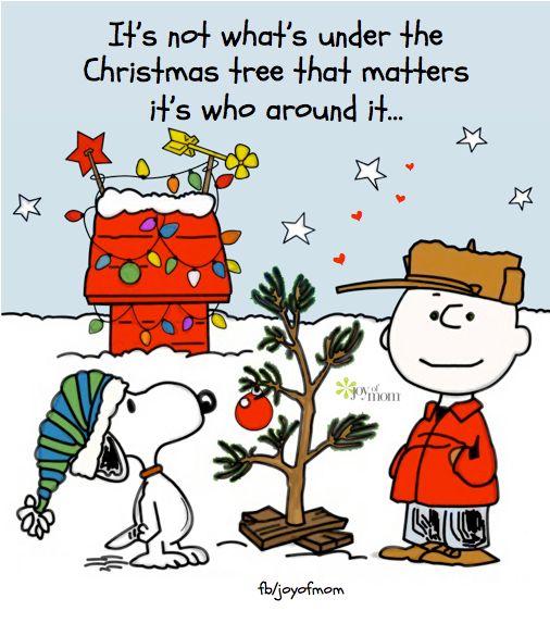 Charlie Brown source: fb/joyofmom