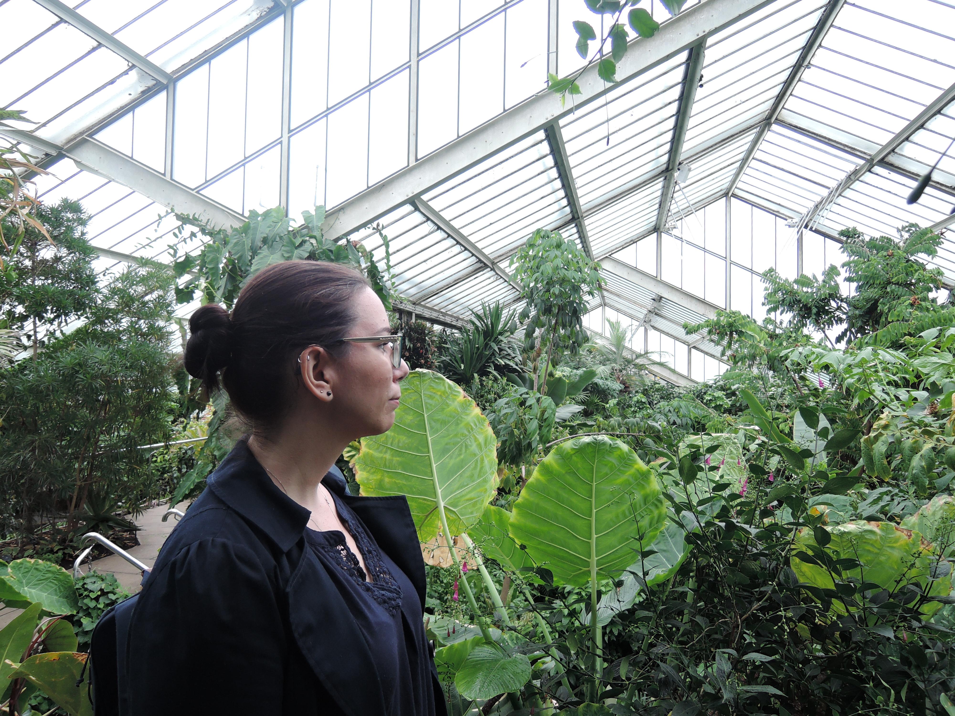 Greenhouse at Kew Gardens