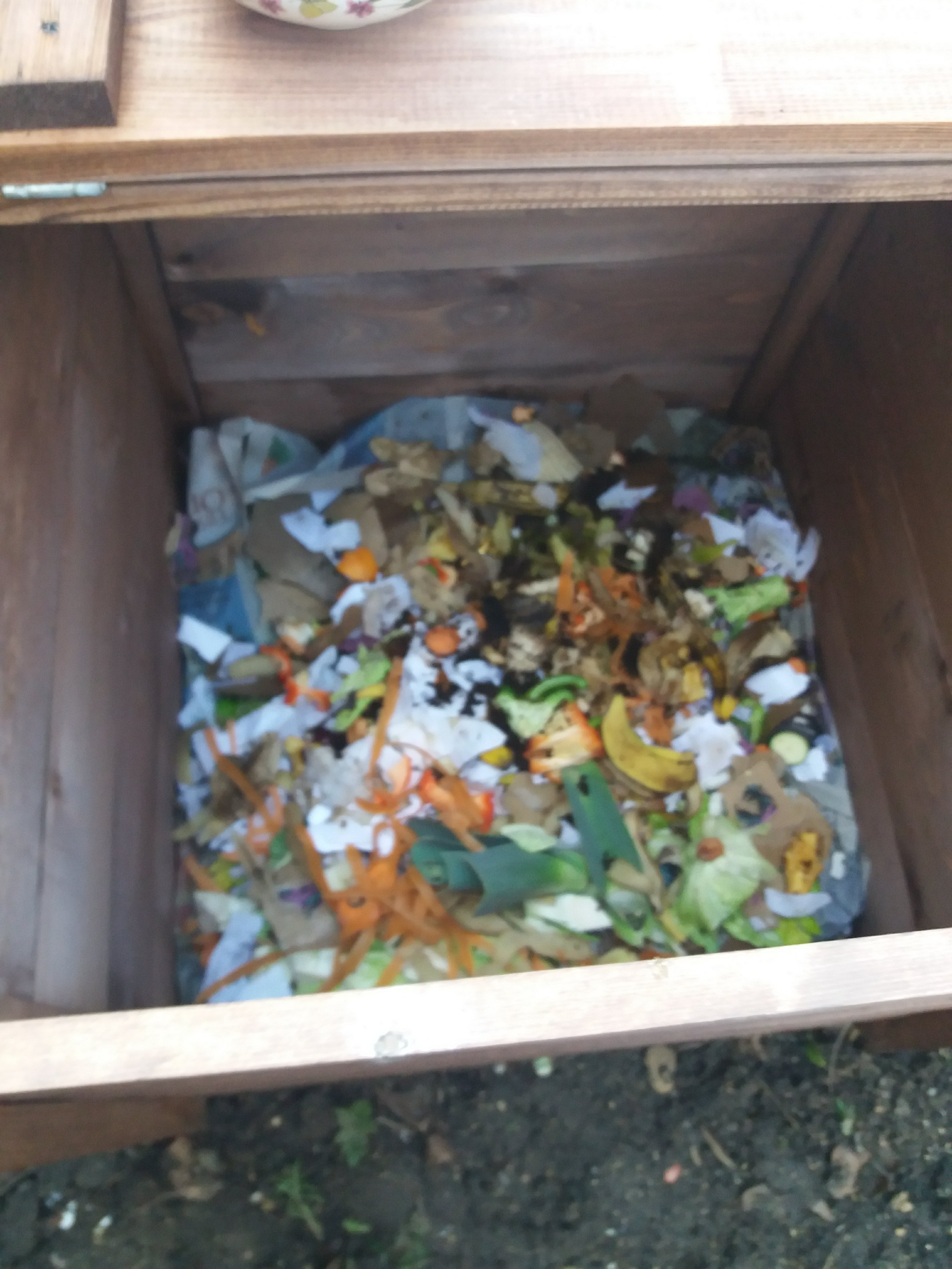 food scraps in the compost